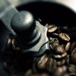 豆を挽く。珈琲を淹れる。時間が止まる。