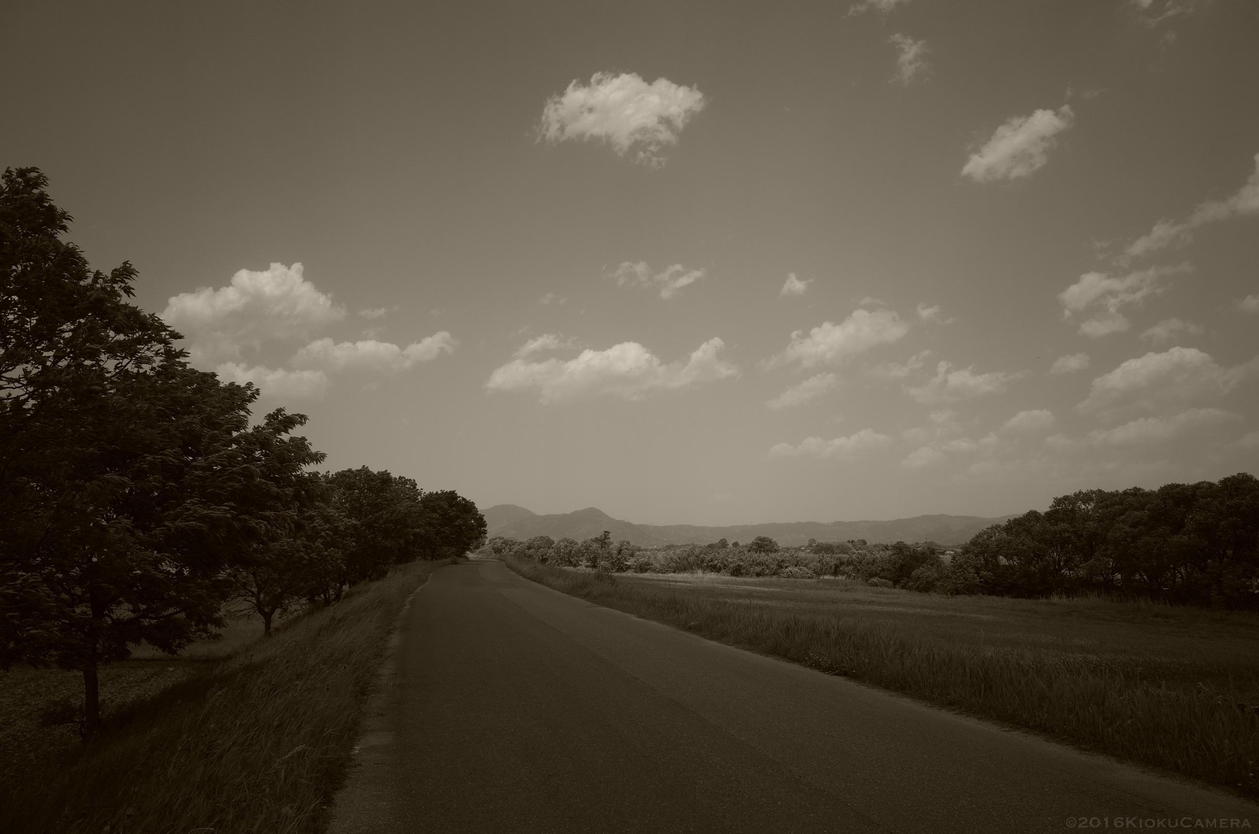 Roubaixと走り、GRと撮る。