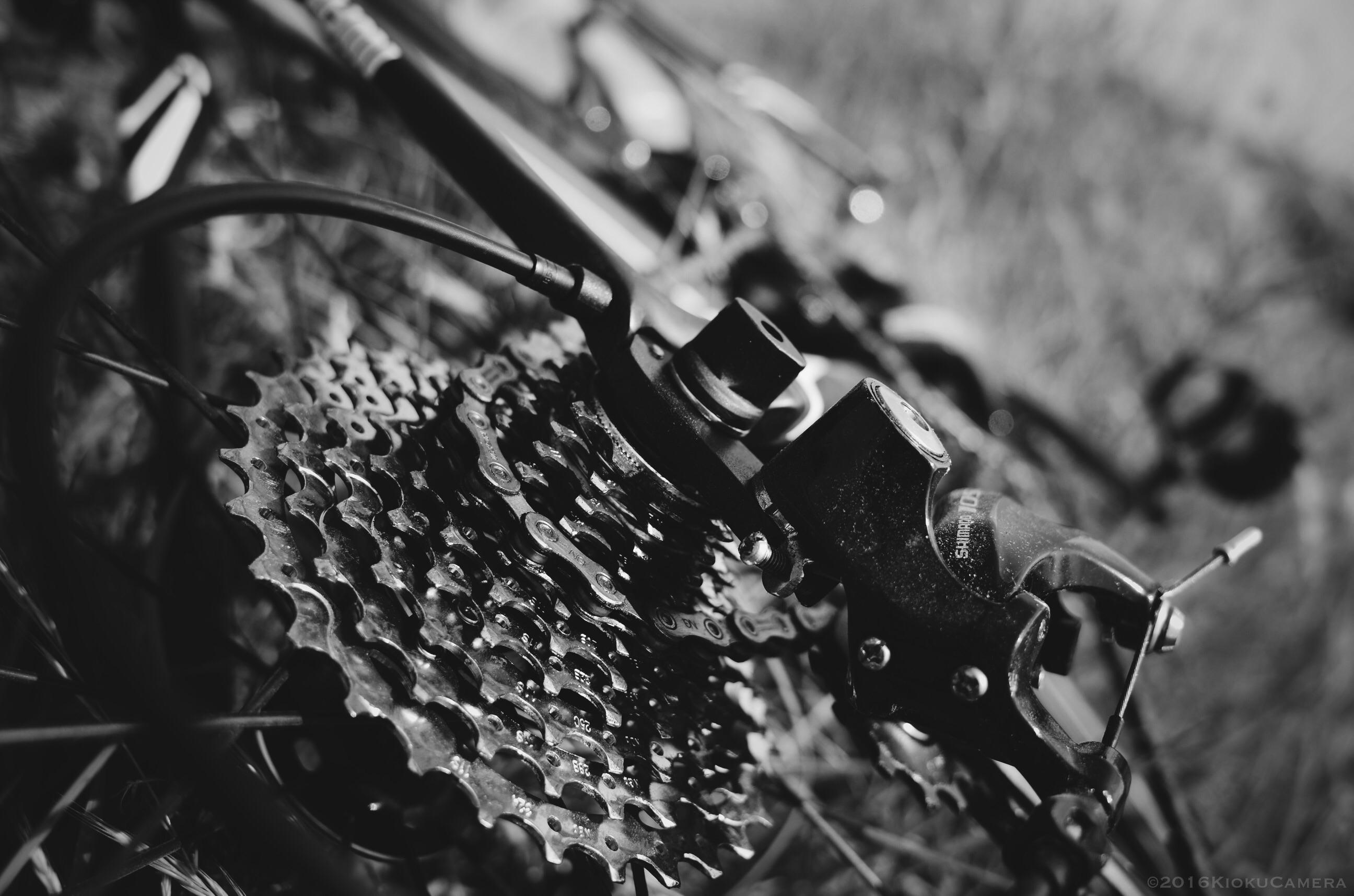 """走っていると無になる瞬間がある。ロードバイクとは""""走る禅""""かもしれない。"""