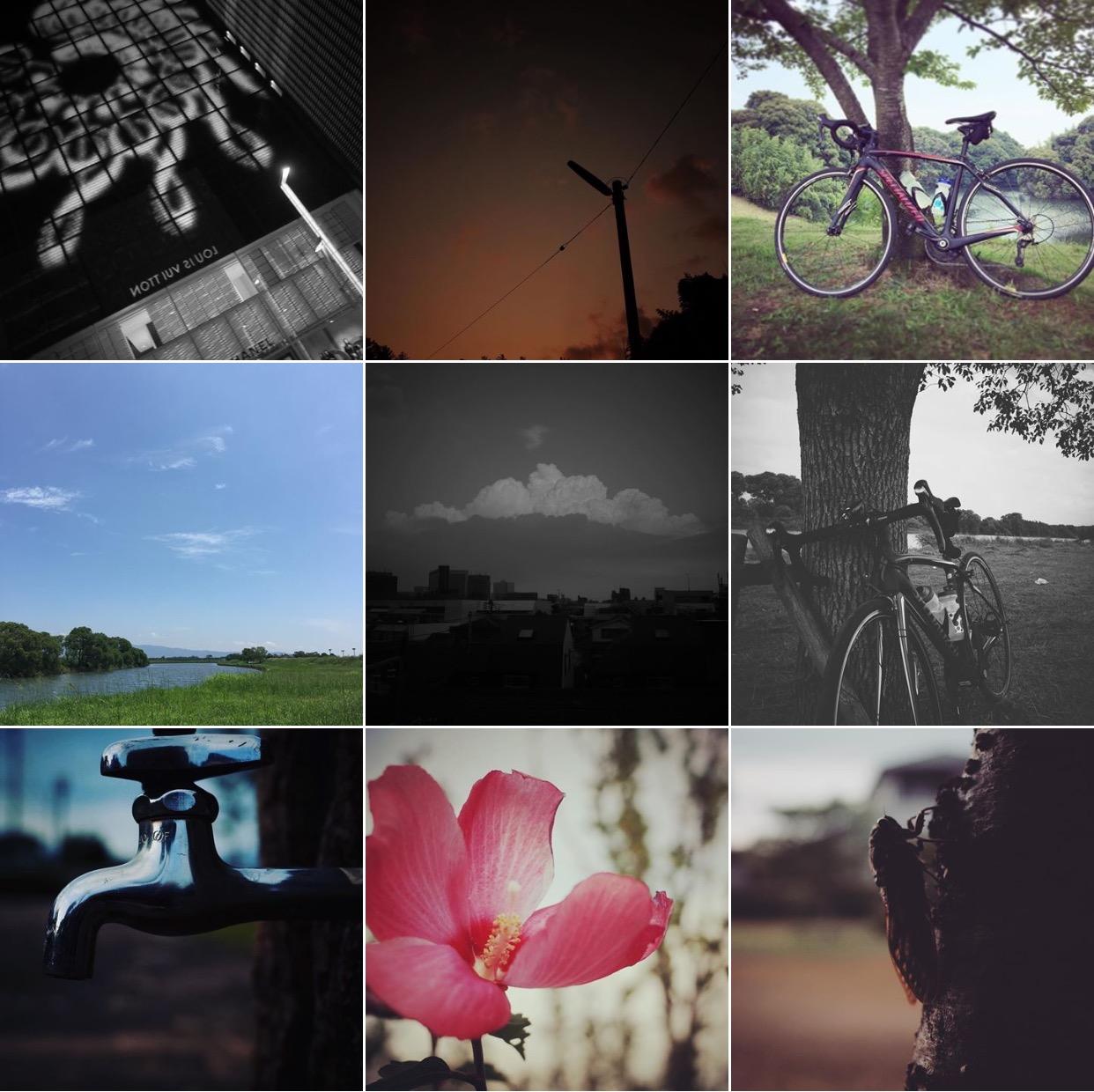 日々の言葉はブログに、日々の写真はInstagramに。