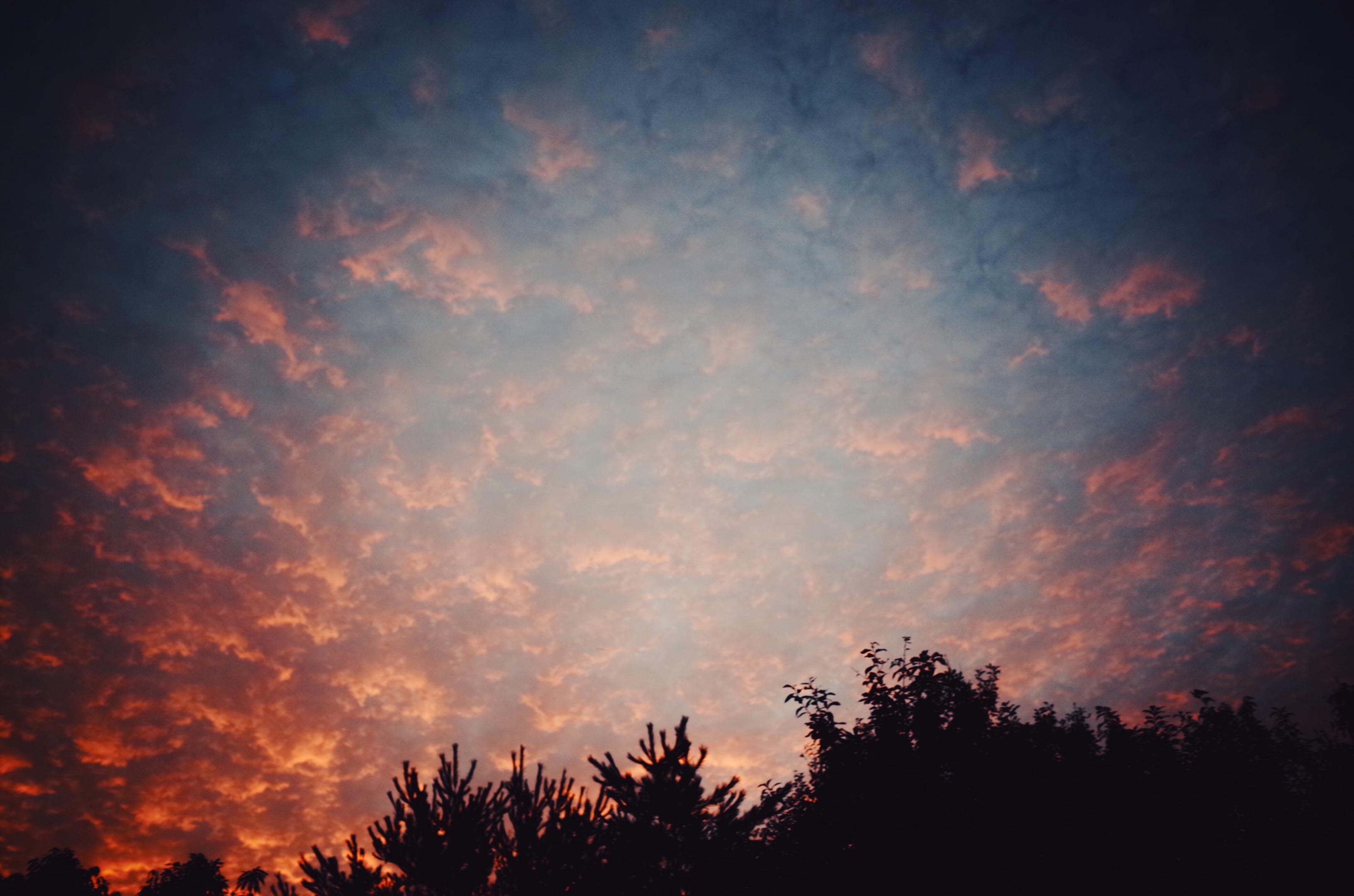 秋の夜長の泣けるマンガについて。