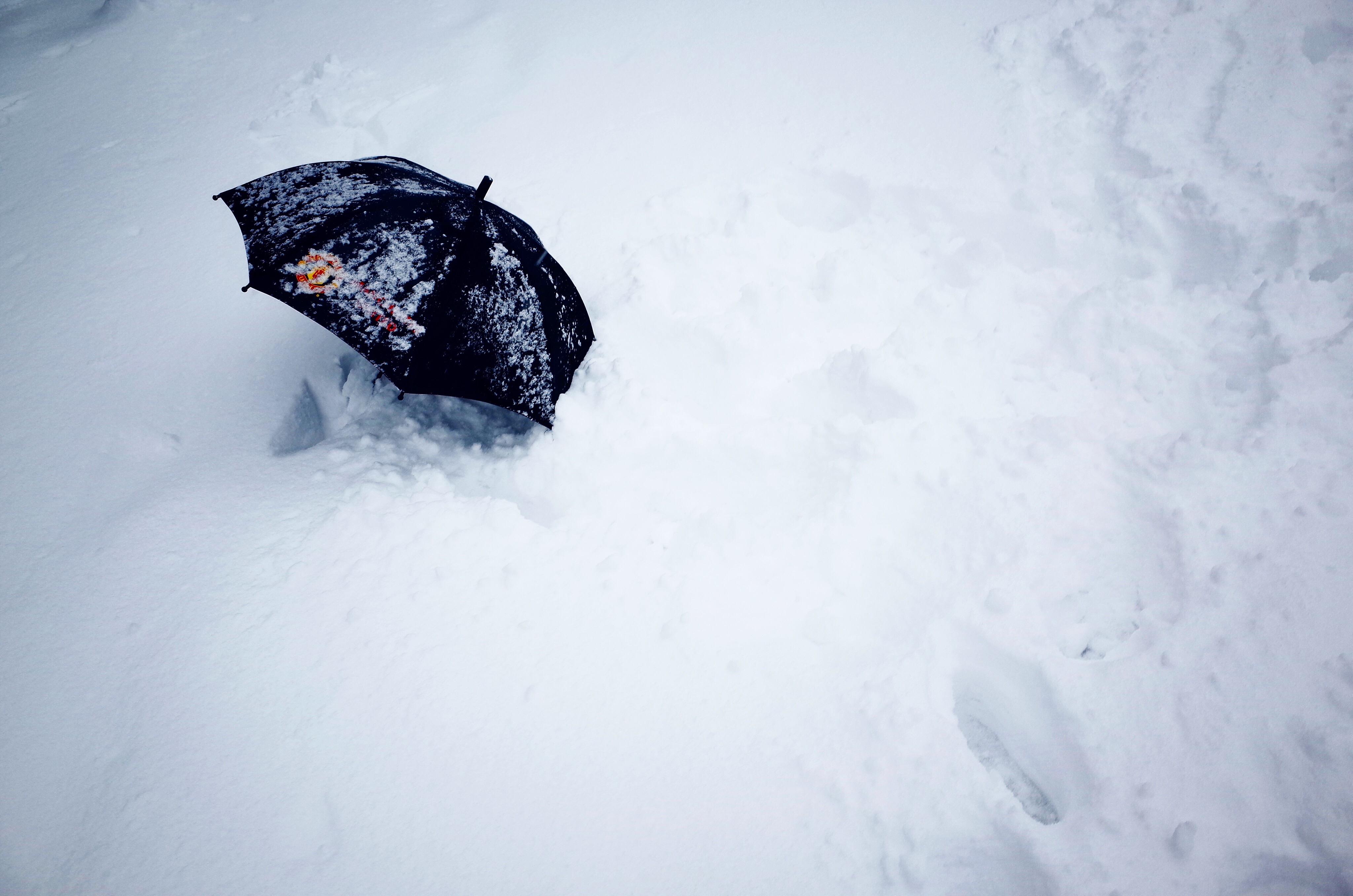 映画「私をスキーに連れてって」は最強だった。