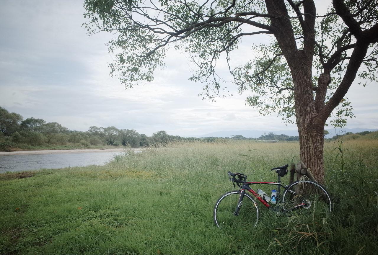 週末、僕はロードバイクと自然の一部になる。