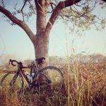 ロードバイクでアタマとカラダをすっからかんにする。
