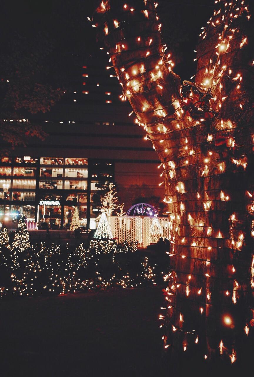 心はかつてのようにクリスマス感がないのは気のせいかな。