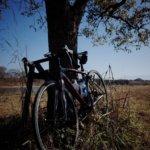 そして、ロードバイクの季節へ。