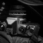 三連休でフィルム5本。近所の散歩カメラだけど、それでも楽しみなのがフィルム。