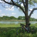 ロードバイクで走ると、歩きや車では見られない風景に遭遇できる。