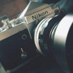 こんな過酷な夏の暑さでも、Nikon F2の堅牢性なら大丈夫な気がしてくる。