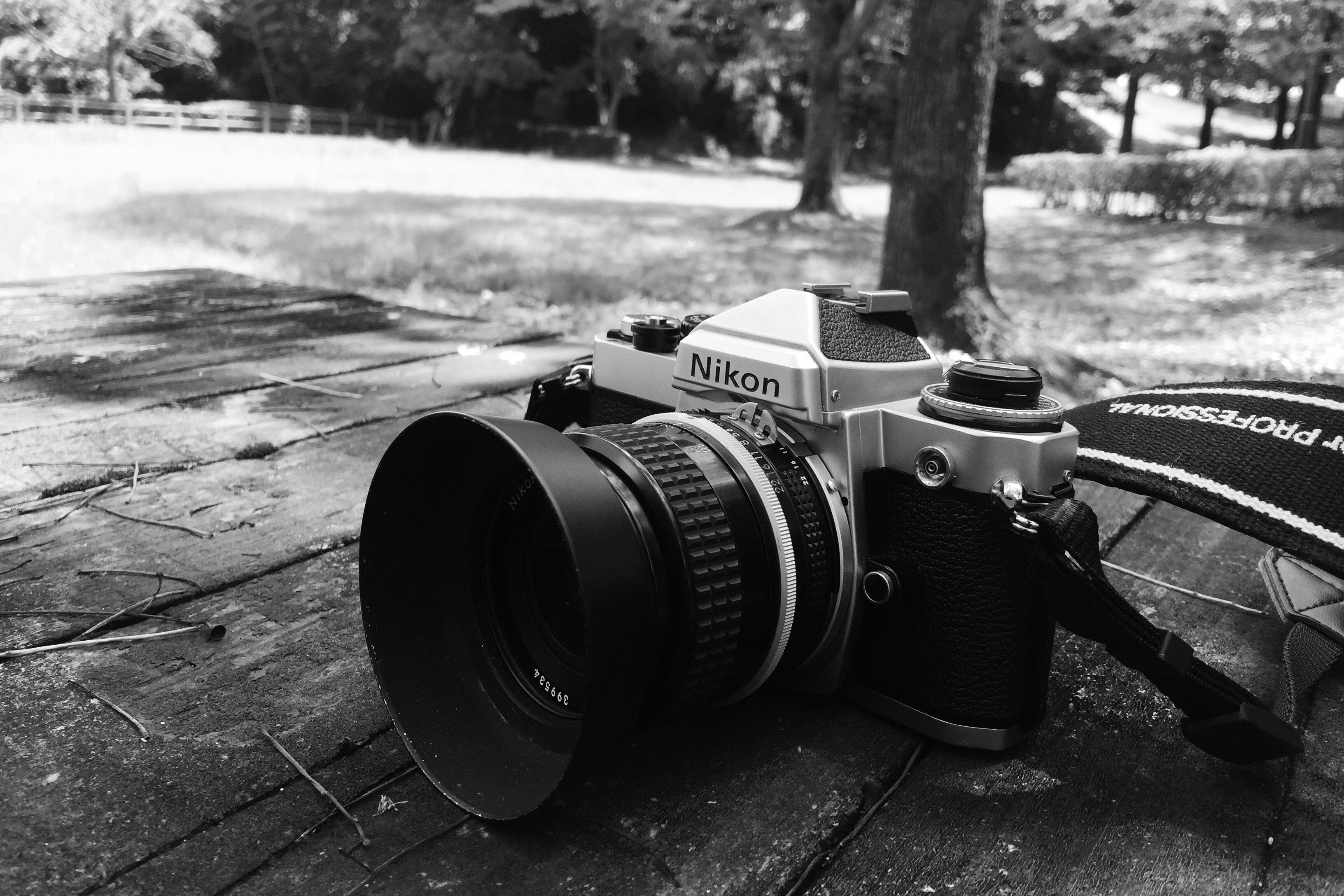 ラフに使えるおすすめの散歩カメラ、Nikon FE。