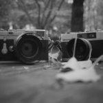 手持ちのカメラでどれがいちばん好きかと聞かれても、全部としか答えようがない。