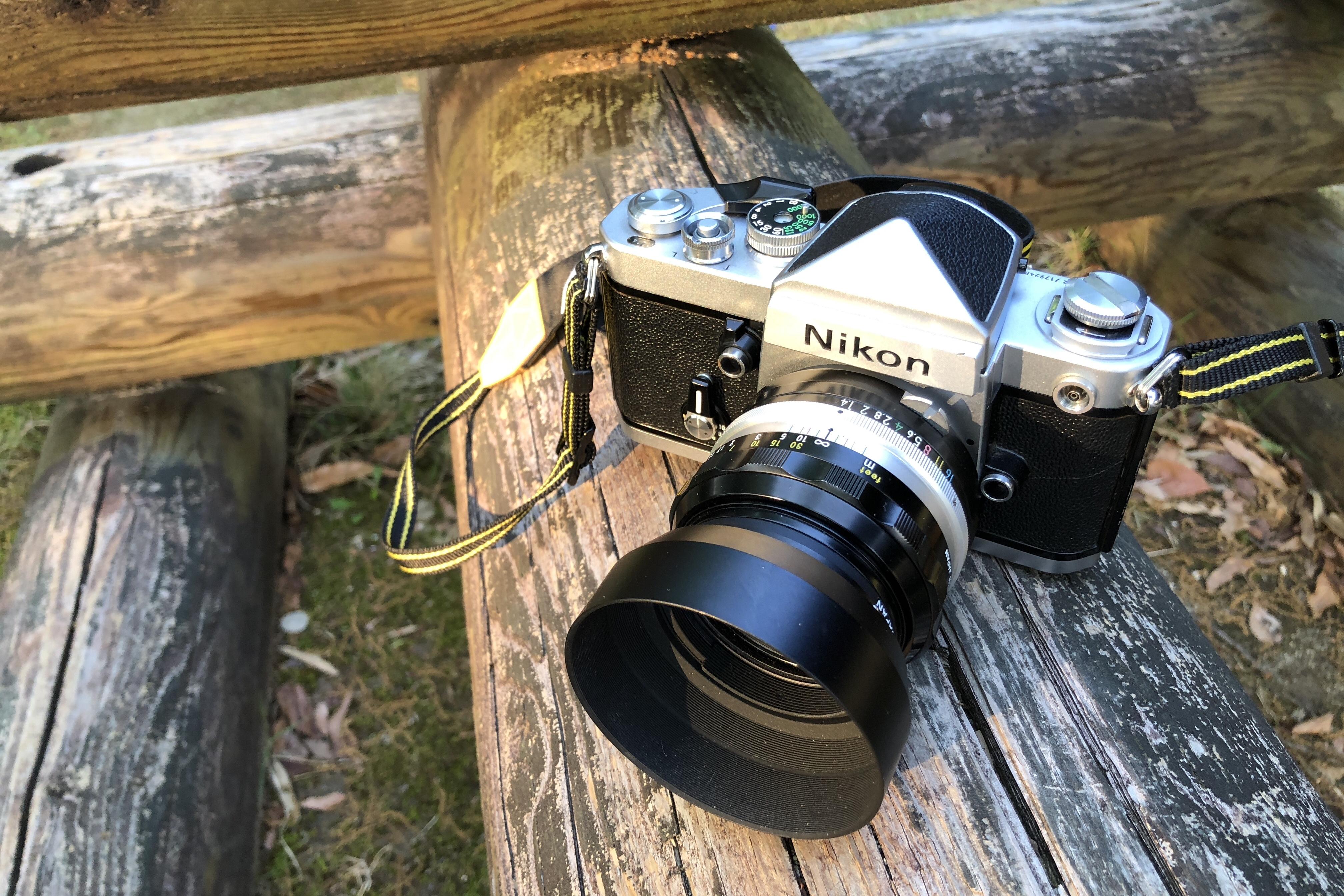 きょうは一日、三台のカメラと。さて、あしたは。
