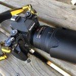 オールドニッコールから実用望遠レンズまで、Nikon Dfが一台あれば趣味と実益を兼ねて楽しめる。